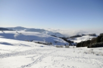 Winter walking in the Black Forest